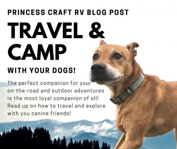 Princess Craft RV Blog Post Dogs